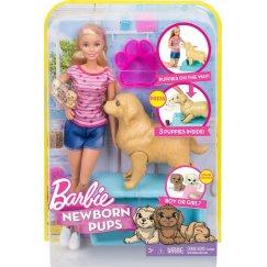 Mattel Barbie FDD43 Барби Игровой набор Кукла и собака с новорожденными щенками