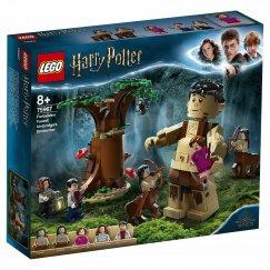 LEGO Harry Potter 75967 Запретный лес: Грохх и Долорес Амбридж